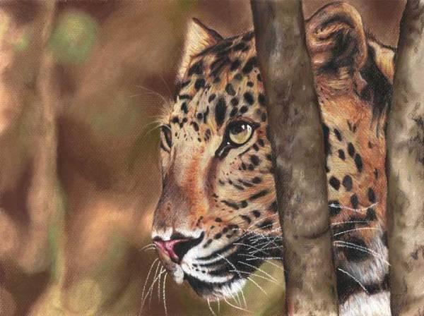 Un_Leopardo_by_felixdasilva